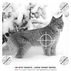 Pistol & Rifle The targets listed here are suited to pistol and rifle. Paper Shooting Targets, Shooting Sports, Survival Equipment, Gun, Range, Projects, Animals, Archery, Log Projects