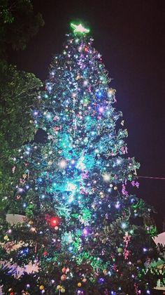 Christmas tree, nen light.