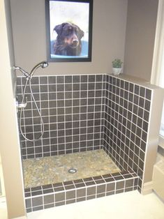 Dog wash contemporary bathroom tile. Love it.