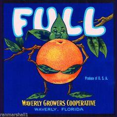 50 Ideas Vintage Crate Labels Orange Fruit For 2019 Vintage Labels, Vintage Posters, Vintage Cards, Orange Crate Labels, Crate Decor, Vegetable Crates, Fruit Illustration, Painting Edges, Up Girl