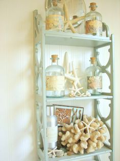 Shell collection display. I would paint the shelving a darker shade so the shells stand out a little more....Jennifer