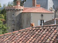 Rooftops, Vouvant, France