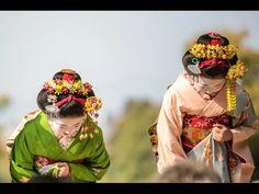 Kanzashi: A Hair Ornament Vital to Kimono and Apprentice Geisha & Maiko