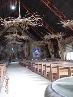 An inspiring use of Driftwood. Natural pieces of driftwood were used to create these chandeliers in a church.