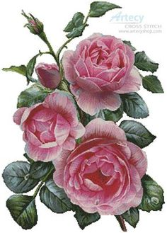 Artecy Cross Stitch. Pretty Pink Roses Cross Stitch Pattern to print online.