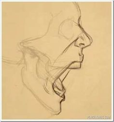 Anatomy Drawing Tutorial drawing a screaming mouth adding skin Drawing Techniques, Drawing Tips, Drawing Sketches, Art Drawings, Drawing Ideas, Sketching, Drawings Of Mouths, Face Sketch, Drawing Skills