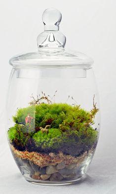 Moss Terrarium Large // Shepard // Dog // Sheep // Green Gift