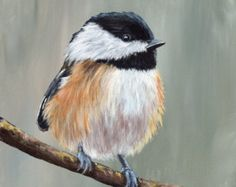 Winter Chickadee is an original acrylic painting hand painted by myself. Painted on Colourfix 500gsm Suede Paper using artist quality acrylic paints, the painting measures 6 x 8 inches (15.2 x 20.3 cm). The painting is unframed/unmounted. The base paper for Colourfix Suede is a 500gsm hot press watercolour paper. Colourfix Suede Paper is an archival quality surface suitable for use with a range of mediums including acrylics. Please note that the image colours may vary to that of the or...