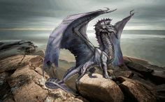 Silver Dragon chapter pictures for the book Dragons and their Species.