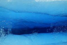 얼음 속 강물은 어떤 모습일까?
