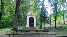 Dunajovská hora poutní místo Trunks, Plants, Frames, Drift Wood, Tree Trunks, Plant, Planets