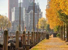 Rotterdam..Ik hou van de herfst...L.Loe