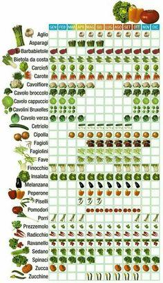 Garten Creative Vegetable Garden Ideas And Decorations # Vegetable Garden Planning, Vegetable Garden Design, Veg Garden, Garden Beds, Vegetable Gardening, Potager Palettes, Herb Garden Design, Growing Vegetables, Hydroponics