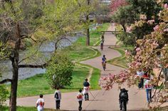 Cherry Creek Trail in the spring