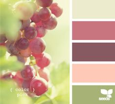 Love the beautiful combo on shades in this 'color pick' palette for a girls bedroom.
