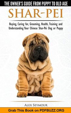 Shar-Pei: The Owner's Guide from Puppy to Old Age - Choosing, Caring for, Grooming, Health, Training and Understanding Your Chinese Shar-Pei Dog ebook by Alex Seymour - Rakuten Kobo Rottweiler Training, Rottweiler Breed, Dog Training, Bull Terrier Puppy, Terrier Puppies, Shar Pei Breeders, Chinese Shar Pei Dog, Chinese Sharpei, Cockapoo Dog