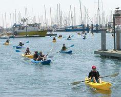 Paddling around Santa Barbara Harbor sponsored by Women's Health Magazine. Great idea!