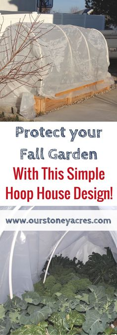 House Construction on a raised bed garden Fall Gardening Tip. Use this simple hoop house design to protect your vegetable crops well into the fall and winter.Fall Gardening Tip. Use this simple hoop house design to protect your vegetable crops well into Garden Care, Diy Garden, Garden Cottage, Garden Soil, Garden Boxes, Raised Garden Beds, Raised Beds, Raised House, Hydroponic Gardening
