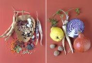 stills - Ulrike Köb - Food Photography