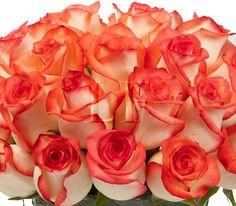 flowers I want