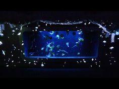 「海月の宇宙」 新江ノ島水族館のプロジェクションマッピング - YouTube