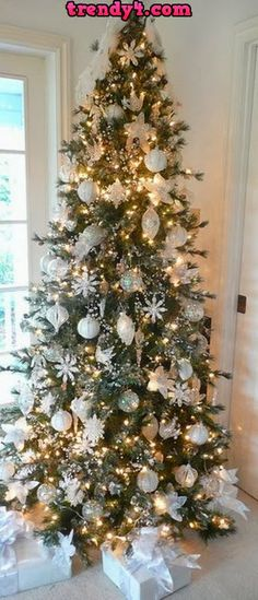 Christmas Tree Stock Photos Images 2014