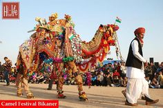 Camel Festival Bikaner is one of the most awaited festivals in India.