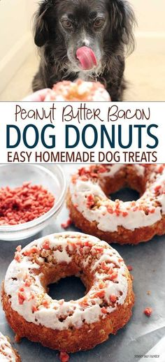 Your dogs will love these super easy peanut butter donuts with yogurt frosting and bacon sprinkles! With only 5 ingredients these healthy homemade dog treats are easy for kids to make too. Dog Treats | Dog Cookies | Homemade Dog Treats | DIY Pet Treats