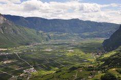 Von fleißiger Bauershand gepflegte Kulturlandschaft bei Kurtatsch