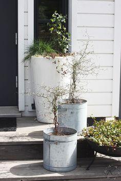 Garden Boxes, Garden Planters, Indoor Garden, Outdoor Pots, Outdoor Gardens, Outdoor Living, Summer Plants, Front Steps, Garden Shop