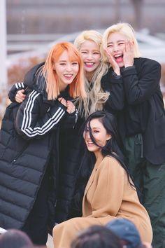 Moonbyul, Solar, Wheein e Hwasa J Pop, Kpop Girl Groups, Korean Girl Groups, Kpop Girls, Snsd, Steven Universe, My Girl, Cool Girl, Wheein Mamamoo