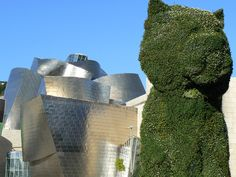 """Puppy"" by Jeffrey ""Jeff"" Koons (1992) @ Guggenheim Museum Bilbao, Abando, Bilbao, Spain - 43ft (13m) topiary sculpture of a West Highland White Terrier puppy, executed with 60k plants."
