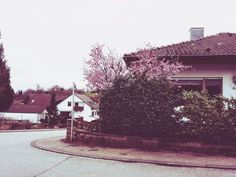 # vintage  # spring