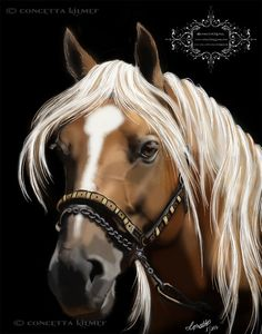 The Palomino  Horse Art  Open Edition Art by concettasdesigns, $18.00