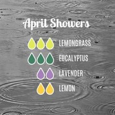 """199 Likes, 10 Comments - Essential Oil Tips (@essential.oil.tips) on Instagram: """"Perfect diffuser blend for the first day or April! What's in your diffuser today?"""""""