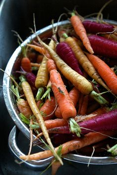 :: Harvesting Winter Carrots {by Chiot's Run}
