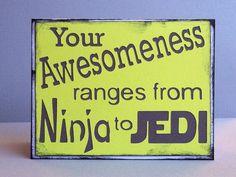My lego awesomeness ranges from ninja to jedi