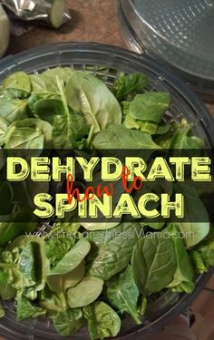 If you purchase fresh produce in bulk it can sometimes be hard to eat it all before it goes bad. Learn how to dehydrate spinach and always have a supply | PreparednessMama