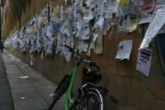 BOLOGNA in 2013. WALL and PAPERS :)
