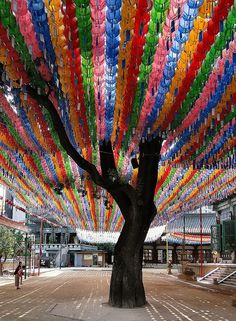 #Seoul, South Korea  # We cover the world over 220 countries, 26 languages and 120 currencies Hotel and Flight deals.guarantee the best price multicityworldtravel.com