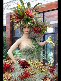 All succulents except the snake plant in head-dress on an old mannequin. Find mannequins and mannequin heads at www.mannequinmadness.com