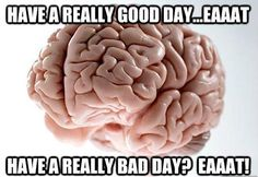 Scumbag Brain on Dieting