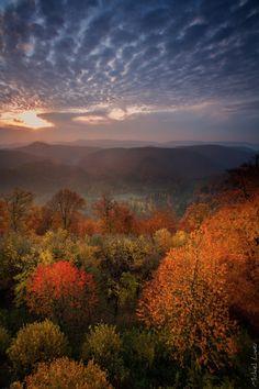 The Palatinate Forest (Pfälzer Wald) Rhineland-Palatinate ~ Germany Michael Lauer
