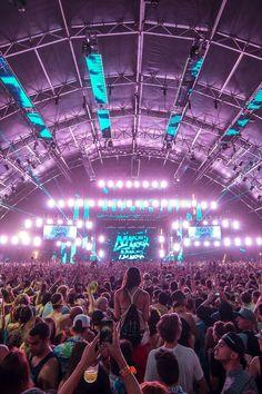 rave-world:  Martin Garrix ~ Coachella 2014