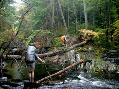 Trail Journals Photos - 2008 Appalachian Trail - Tailgate crossing a creek on a high log...