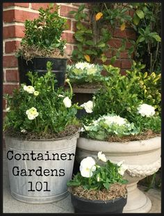 Container garden group containers of varying heights for impact http://mysoulfulhome.com