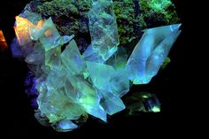 Excentric  stones..seems clear Quartz or Calcite (nice rhomboedric symmetry shown) with Broccoli to me