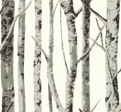 Birch Tree Grey Wallpaper
