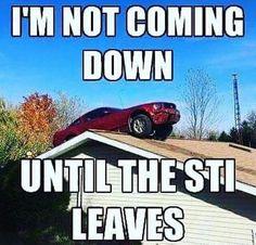 Hahaha makes my day!