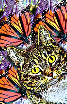 Cat Art Print 8 x10 prints are $20 free shipping in the USA order on Facebook Diane Ortlieb Collage Artist